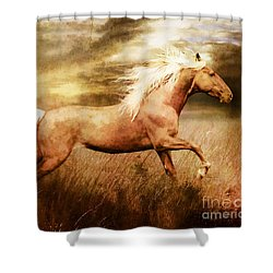 Fleet Shower Curtain by Shanina Conway