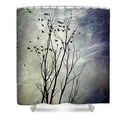 Flock Of Birds In Silhouette Shower Curtain by Christina Rollo