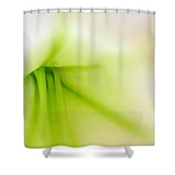 Floral Abstract Shower Curtain by Juergen Roth