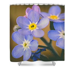 Forget Me Nots Shower Curtain by Marco Oliveira
