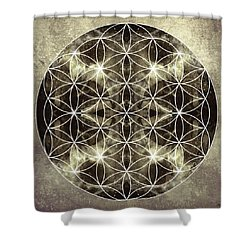 Flower Of Life Silver Shower Curtain by Filippo B
