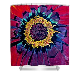 Flowerburst Shower Curtain by Rory Sagner
