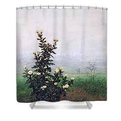 Flowering Chrysanthemum With Worker Shower Curtain by Leon Bonvin