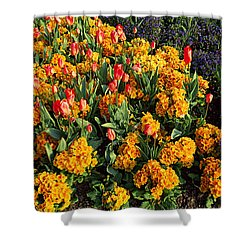 Flowers In Hyde Park, City Shower Curtain by Panoramic Images