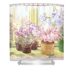 Flowers On The Windowsill Shower Curtain by Julia Rowntree