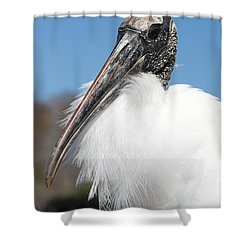 Fluffy Wood Stork Shower Curtain by Carol Groenen
