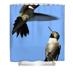 Fluttering Shower Curtain by Shane Bechler
