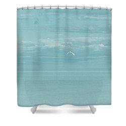 Fly Away Shower Curtain by Kim Hojnacki