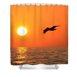 Flying Into The Sun Shower Curtain by David Lee Thompson