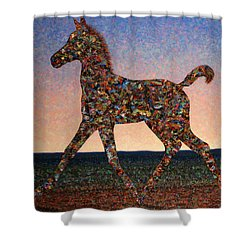 Foal Spirit Shower Curtain by James W Johnson