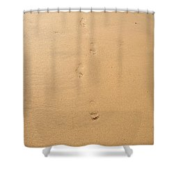 Footprints In The Sand Shower Curtain by Pixel  Chimp