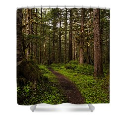 Forest Serenity Path Shower Curtain by Mike Reid