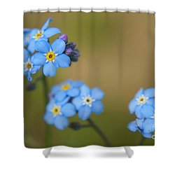 Forget Me Not 01 - S01r Shower Curtain by Variance Collections