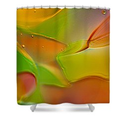 Foxy Shower Curtain by Omaste Witkowski