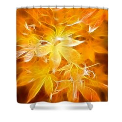 Fractal Gold 6664 Shower Curtain by Timothy Bischoff