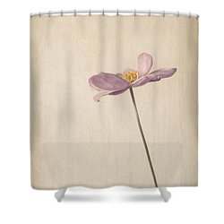 Fragility Shower Curtain by Amy Weiss