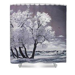 Freeze Shower Curtain by Sorin Apostolescu