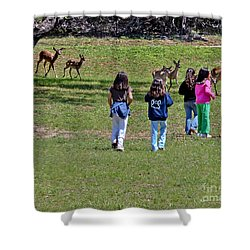 Friends Making Friends Shower Curtain by Bob and Nadine Johnston