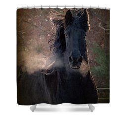 Frost Shower Curtain by Fran J Scott