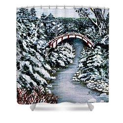 Frozen Brook - Winter - Bridge Shower Curtain by Barbara Griffin