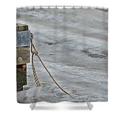 Frozen Shower Curtain by Karol Livote