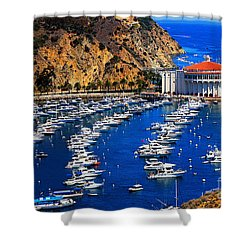 Full Bay Shower Curtain by Cheryl Young
