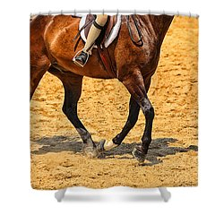 Gallop Shower Curtain by Karol Livote
