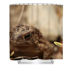 Garden Frog Shower Curtain by Karol Livote