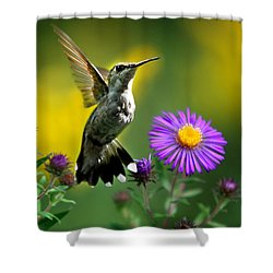 Garden Lights Shower Curtain by Christina Rollo