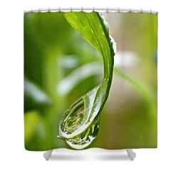 Garden Reflections 3 Shower Curtain by Kume Bryant