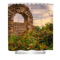 Gate To Nowhere  Shower Curtain by Eti Reid