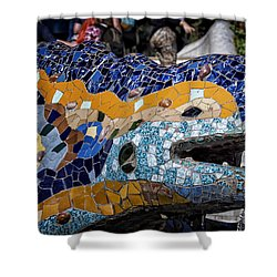 Gaudi Dragon Shower Curtain by Joan Carroll