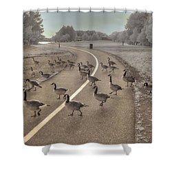 Geese Crossing Shower Curtain by Jane Linders