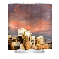 Gehry Rainbow Shower Curtain by Joe Mamer