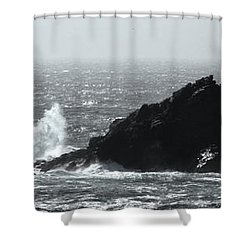 General De Gaulle In The Bath Shower Curtain by Linsey Williams