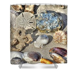Gifts Of The Tides Shower Curtain by Benanne Stiens