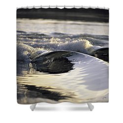 Glass Bowls Shower Curtain by Sean Davey