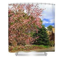 Glimpses Of Spring Shower Curtain by Dora Sofia Caputo Photographic Art and Design