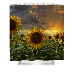Glory Shower Curtain by Debra and Dave Vanderlaan
