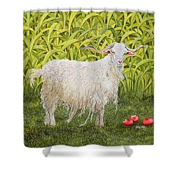 Goat Shower Curtain by Ditz