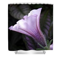 God's Grace Is Enough Shower Curtain by Sara  Raber