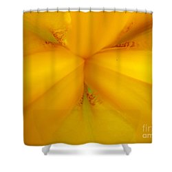 Gods Kaleidoscope 2 Shower Curtain by Jennifer E Doll