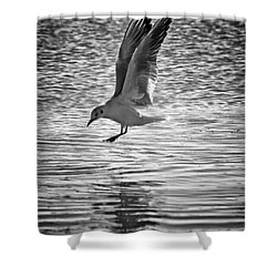 Going Fishing Shower Curtain by Stelios Kleanthous