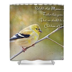 Gold Finch On Twig With Verse Shower Curtain by Debbie Portwood