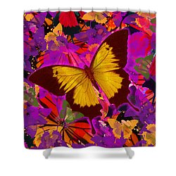 Golden Butterfly Painting Shower Curtain by Alixandra Mullins
