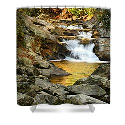 Golden Pond Shower Curtain by Penny Lisowski