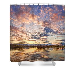 Golden Ponds Scenic Sunset Reflections 4 Shower Curtain by James BO  Insogna