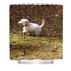 Golden Retriever Puppy Shower Curtain by Andrea Anderegg
