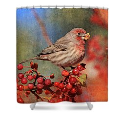 Good Grief   These Berries Sure Are Messy  Shower Curtain by Donna Kennedy