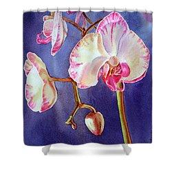 Gorgeous Orchid Shower Curtain by Irina Sztukowski